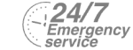 24/7 Emergency Service Pest Control in Surbiton, Long Ditton, KT6. Call Now! 020 8166 9746