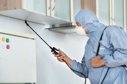 Home Pest Control, Pest Control in Surbiton, Long Ditton, KT6. Call Now 020 8166 9746